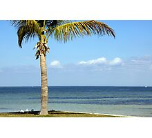 Paradise! Photographic Print