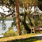 Bench by the Lake by Rosalie Scanlon