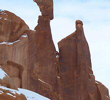 Rock of Wisdom by Shiva77