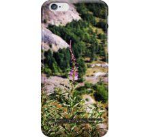 wildflowers over cliff edge Johnston's Ridge iPhone Case/Skin