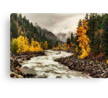 Flowing through Autumn Canvas Print