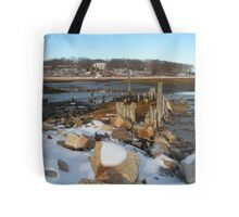 Winter Thought Tote Bag
