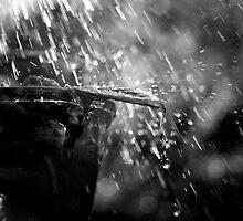 Rain on a Vase by LILKULKA