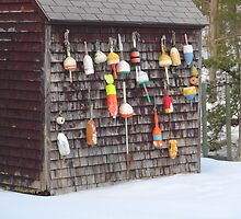 Fishing Bouy Wall by Connie Thomase