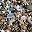 White Sea Glass and Tiny Seashells and Pebbles by Teresa Schultz