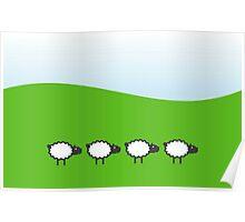 Four Sheep VRS2 Poster