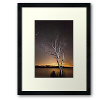 """Can't see the Forest for the Tree"" ∞ Lake Somerset, QLD - Australia Framed Print"
