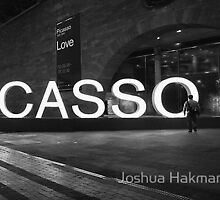 Picasso Panoramic... by Joshua Hakman by Shot in the Heart of Melbourne, 2013