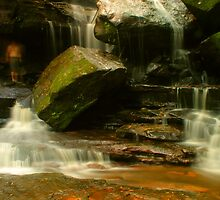 Jake The Peg was beside himself at Somersby Falls by Michael Matthews