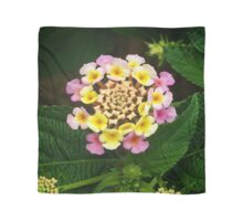 Fresh Lantana Flower Against Leaf Background Scarf