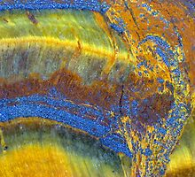 Music To My Ear (Tiger Eye) by Stephanie Bateman-Graham