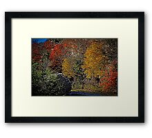 Fall Colors Airbrush Framed Print