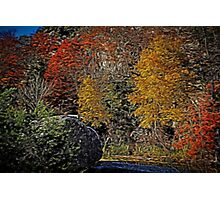 Fall Colors Airbrush Photographic Print