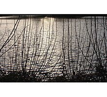 Water in Sunset Photographic Print