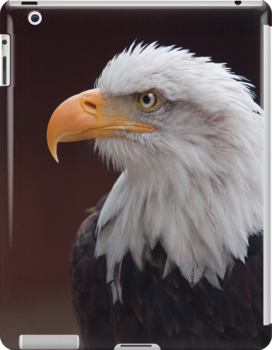 Proud Eagle iPad Case by Krys Bailey