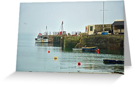 Foggy Day At The Harbour ~ Lyme Regis by Susie Peek