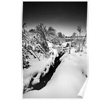 Black Winter Stream BW Poster