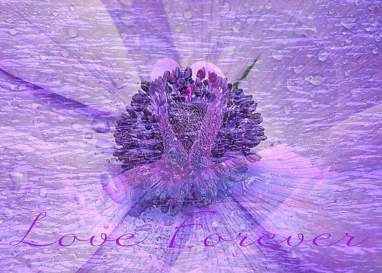 Purple Valentine by AnnDixon