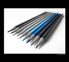 Caran D'Ache Pencils by © Sophie W. Smith