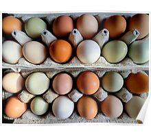 The Incredible Edible Egg...Fresh Pickins Poster