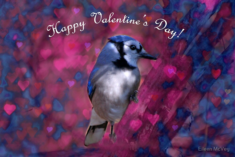 Blue Jay Valentine Card by Eileen McVey
