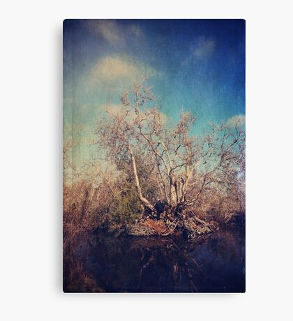Just Trying to Survive Canvas Print