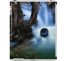 Margaret Falls 01 iPad Case/Skin