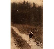 Journey Photographic Print