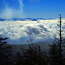 CLOUDS,CLINGMANS DOME by Chuck Wickham