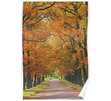 Autumn in Catherine Park, Pushkin Poster