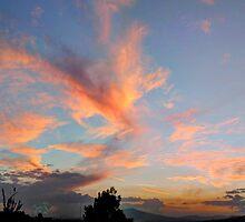 ©HCS Cloud Is All Around by OmarHernandez