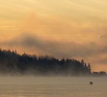 Morning by Will Rynearson