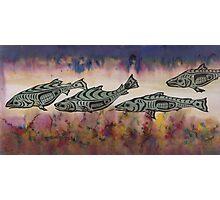 Underwater Salmon  Photographic Print