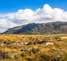 View over the moss of Mointeach Mhor to Sgurr an t Sasunnnaich by Hugh McKean