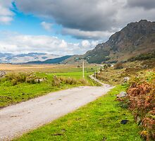 Landscape, Single track road, Kinloid to Loch Morar by Hugh McKean