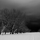 Snow covered Field by Will Rynearson