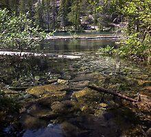 Sunken Timber Lake by JPMcKim