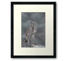 Waiting out the Storm Framed Print