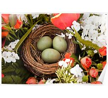 Spring Eggs in a Nest Poster