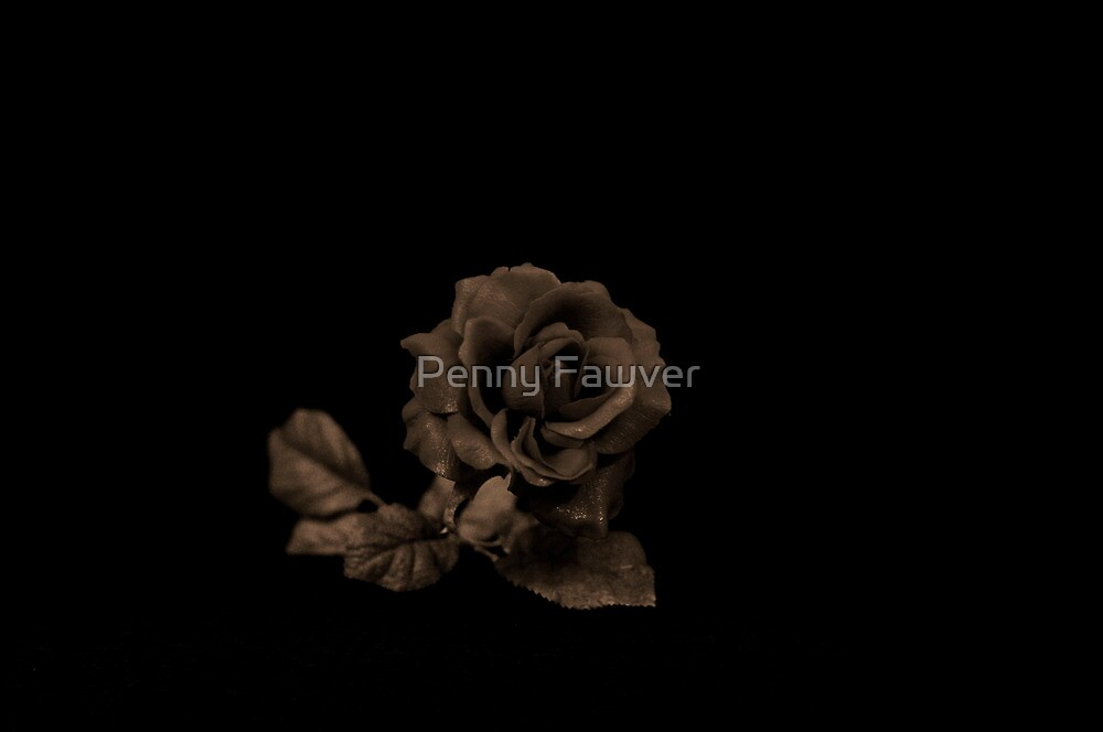 The rose by Penny Rinker