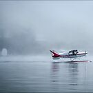 Flight Into Fog by Mikell Herrick