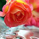 Sunrise Rose by Tiffany Muff