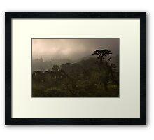 """Cloud Forest Sunset"" -- Costa Rica Framed Print"