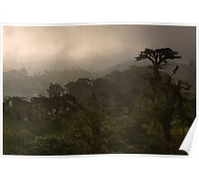 """""""Cloud Forest Sunset"""" -- Costa Rica Poster"""