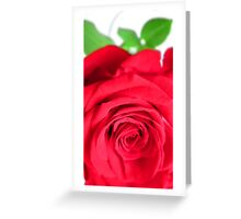In Memory of Mom Greeting Card