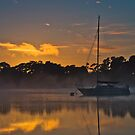 Tamar River Dawn by fotosic
