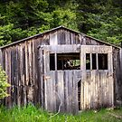 Old Yellow Garage by Sue Smith