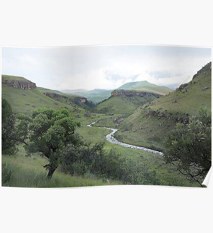 Bushman River at Dawn Poster