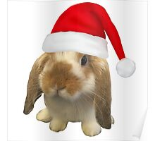 Christmas Lop Poster