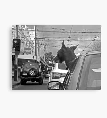 Afternoon traffic reports on WOOF- FM.  Metal Print